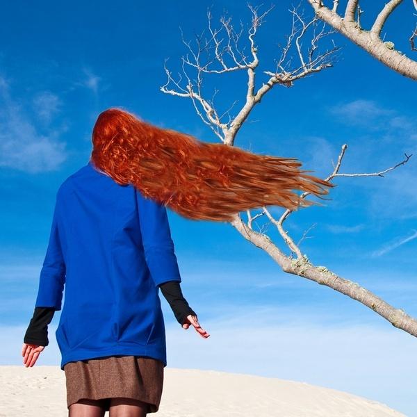 a piece of tree by chudzy