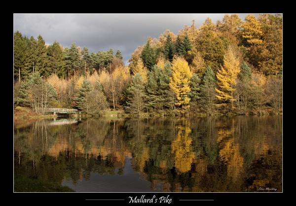 Mallard\'s Pike by SteveMoulding