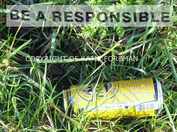 BE RESPONSIBLE..... by kforeman