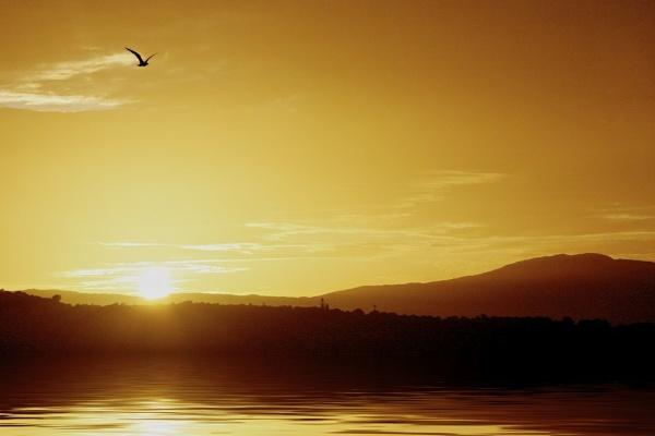 Last Flight Home by GillSleePhotography