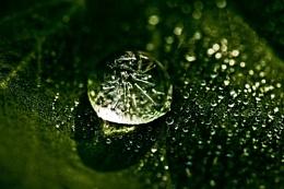 Frozen Dewdrop