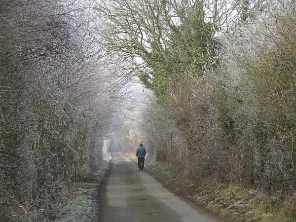 Winter Walker by Glostopcat