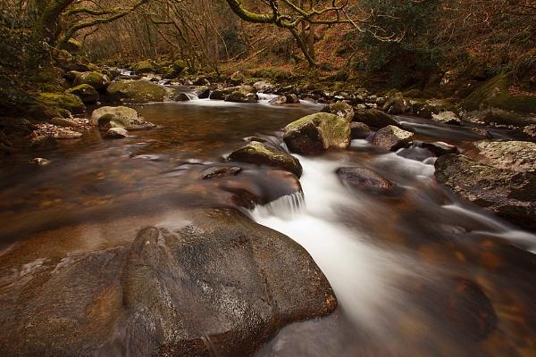 Shaugh Prior, Dartmoor by andyfox