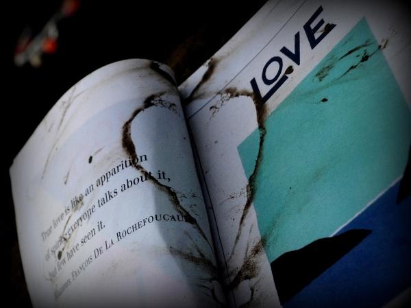 Love is like..... by MissPea