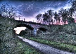 Woodford dusk