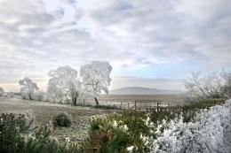 Criffel Winter