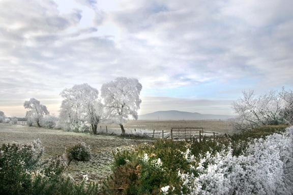 Criffel Winter by aliciabeesley