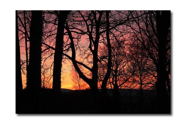 Filligree sunset by HobbitDave