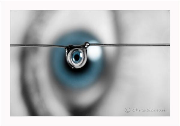 Eye see you!! by Sloman
