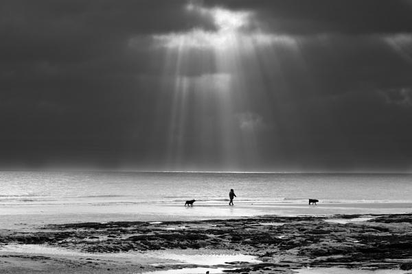 Walking the Dog by jasonowen73