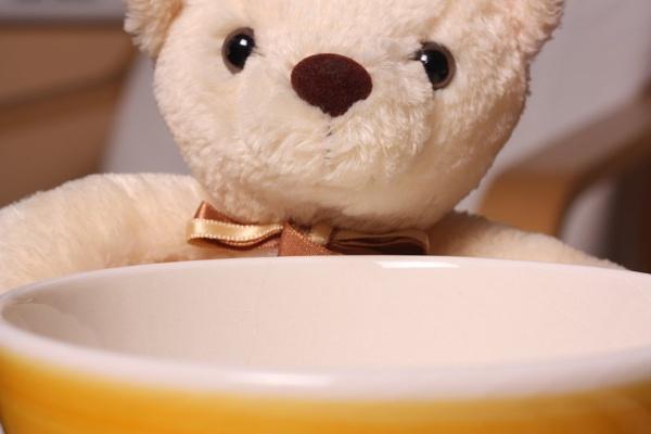 Little Bear by SteveBaz