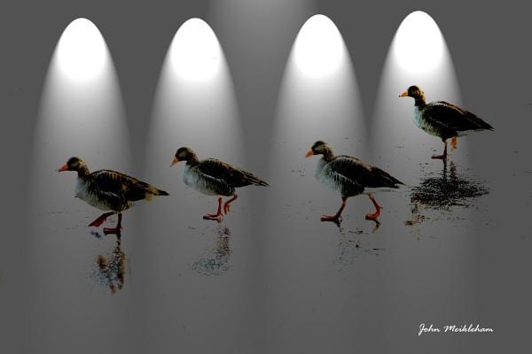 Dancing on Ice by JohnMeik