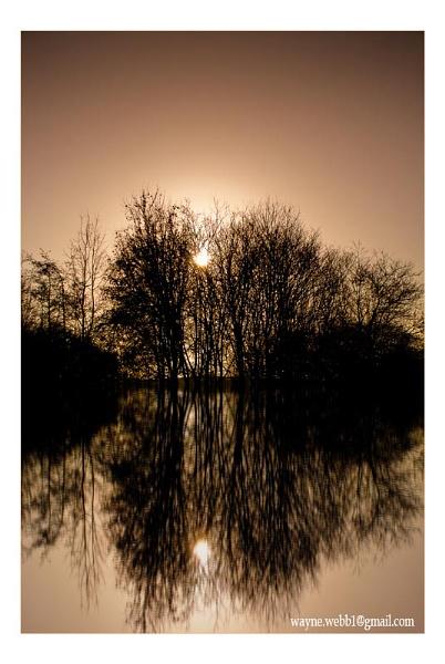 Reflection by Wayniac