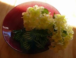 ruby bowl 2