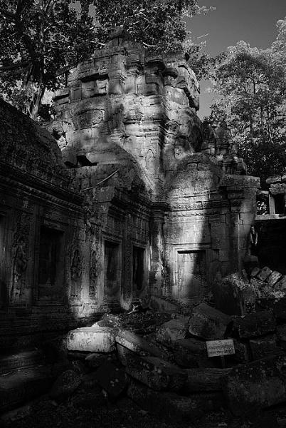 Ta Prohm, in Siem Reap, Cambodia by piggie_vickie