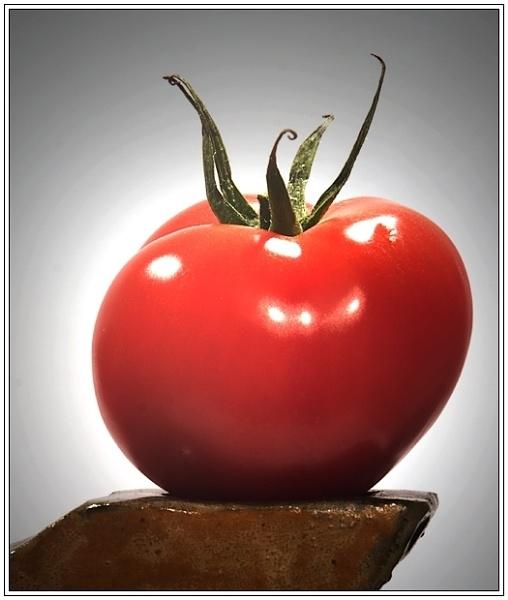 Tomato by Phillbri