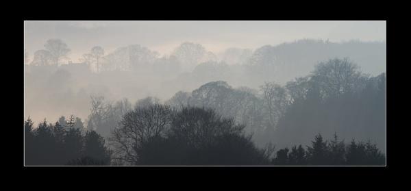 Misty Morning by CM4G