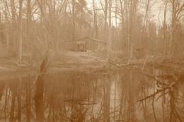 Foggy swamp house