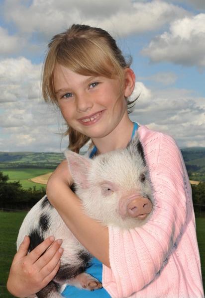 Pet Pig by Dugs