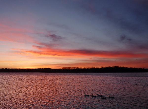 Sunrise by Philo
