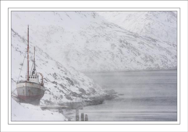 Cold Wind Blows..... by ejtumman