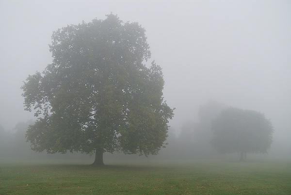 Brockwell Silence by arpad