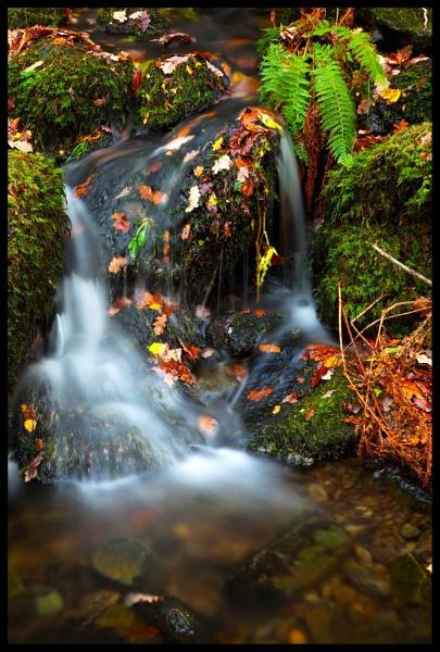 Lodore Falls by BernieS