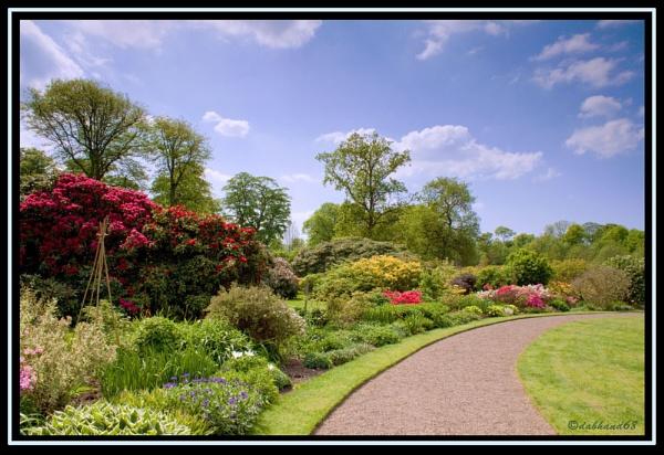 Garden Pleasure by dabhandphotographics