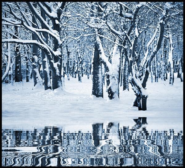 Upon Reflection.