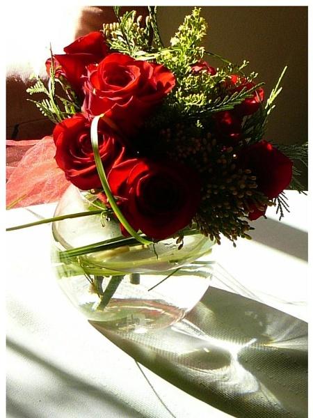 Red Rose Valentine by blondspice