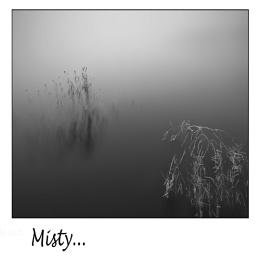 Misty...