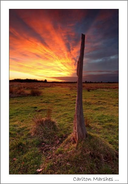 Carlton Marshes by Gaz_H
