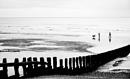 Beach Walkers by Juliee