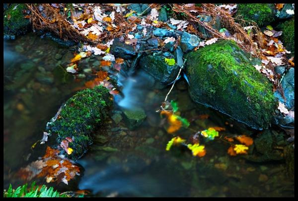 Lodore Falls 2 by BernieS