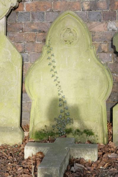 grave stone by jimbob5643
