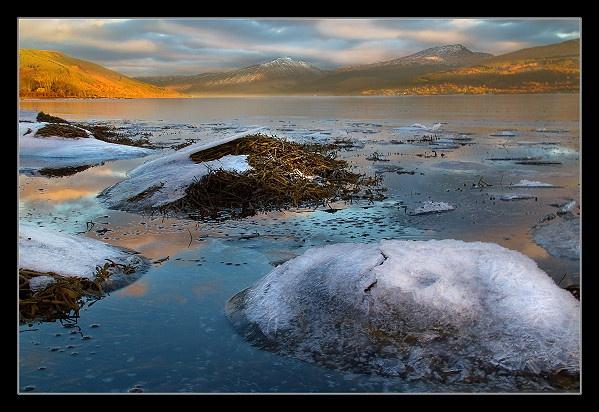 Frozen Seaweed by Scott_Scot