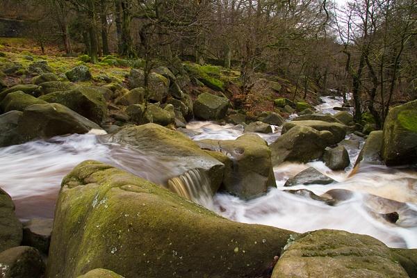 Downstream... by mcgannc