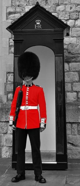 The Guard by Markus_Brehm