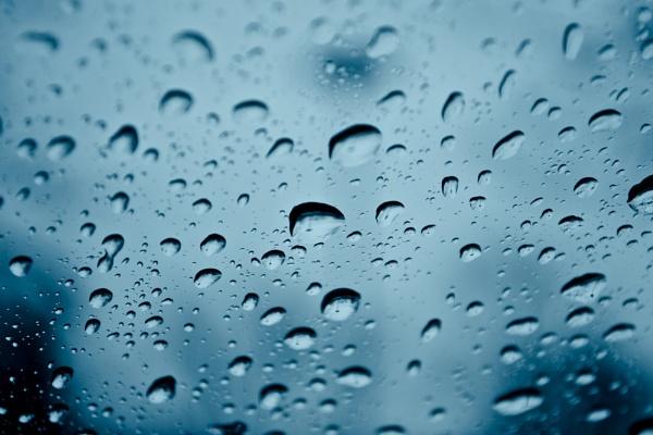 Rain Drops by mswiech
