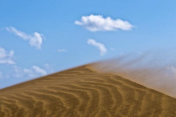 Shifting dune by neil john