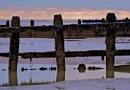 Groyne Posts by JJGEE