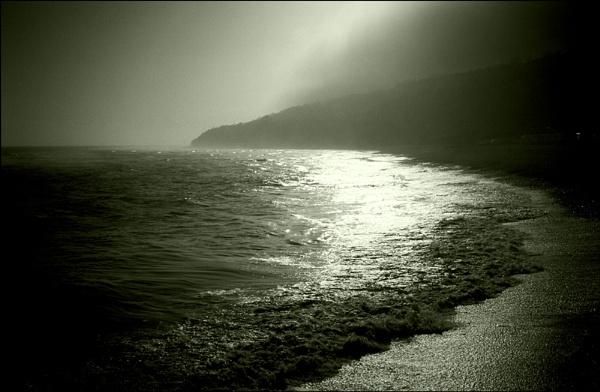 Misty Morn by derekv