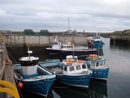 seahouses harbour  northumberland