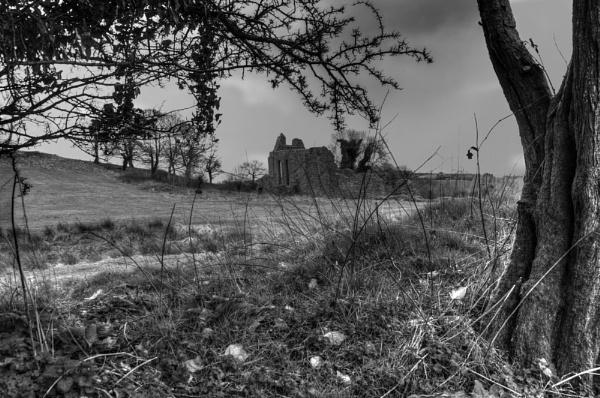 Inch Abbey by JohnMeik