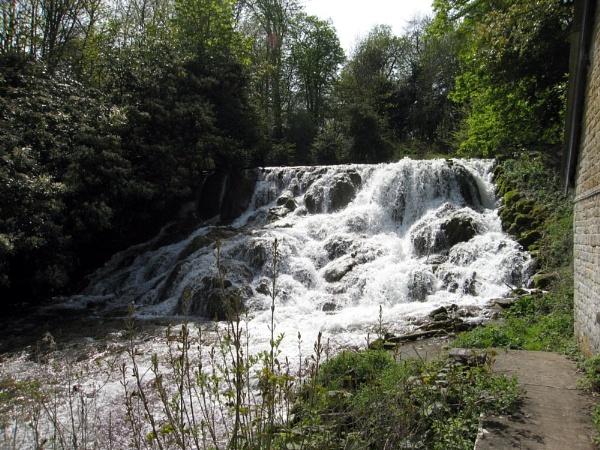 Water at Blenheim by BillPaskin