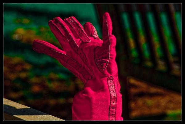 That Lost Glove Again.................Looking again by hobbo