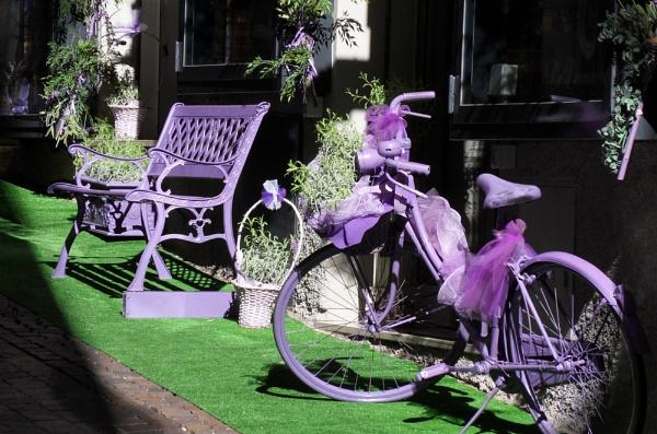 Purple bike by DavidBird