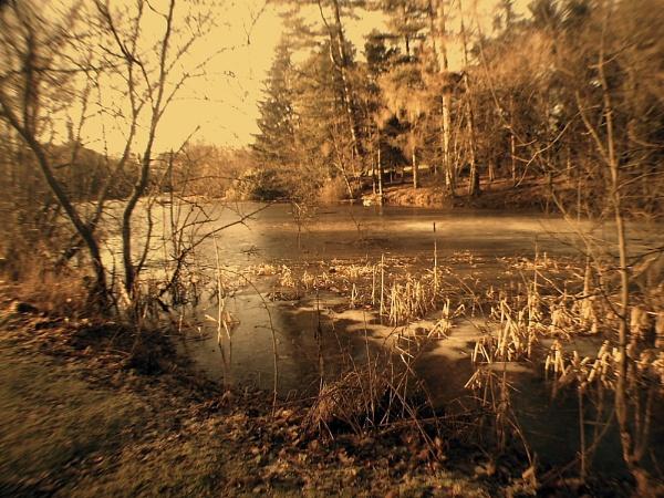 Stirling University Lake by amandathomson
