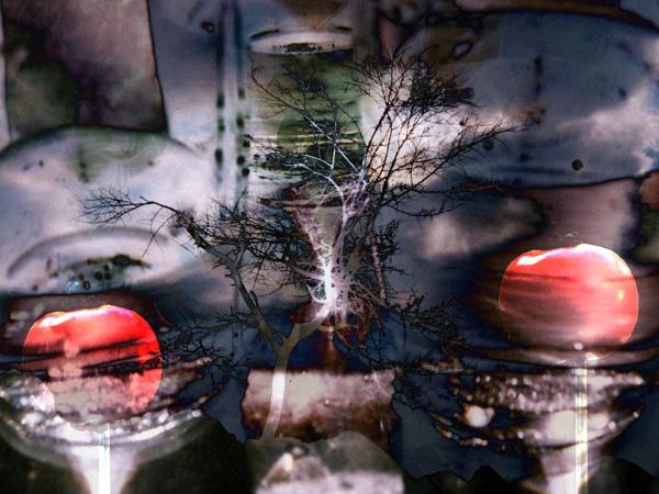 "\""Untitled\"" by Tarachand"