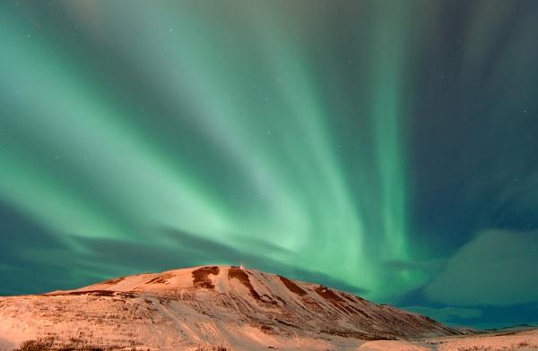 Aurora Rex by Geralttt